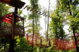 Szklarska Poręba Atrakcja park linowy Trollandia
