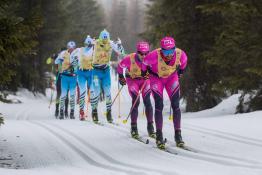 Szklarska Poręba Wydarzenie Narciarstwo biegowe 44. Bieg Piastów 50 km CT